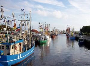 Friedrichskoog_Hafen_Kutterregatta2